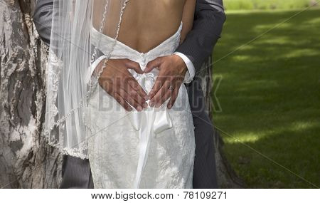 Outdoor rear view photo of man's hands forming heart-shape on bride's dress