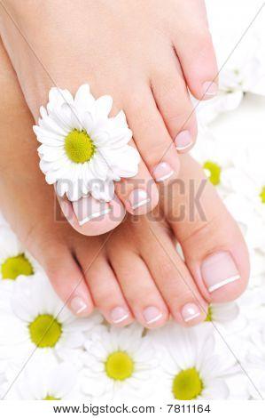 Well-groomed Female Feet With Beautiful Toenails