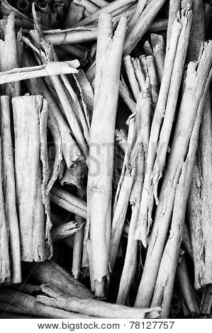 Pile Of Twigs B&w