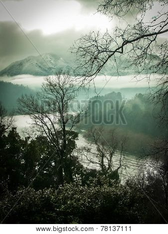 Misty Mountain, Lake And Forest