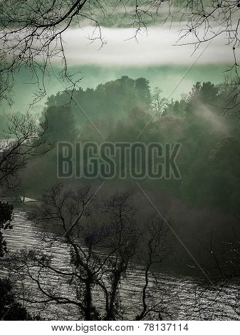 Misty Lake And Forest