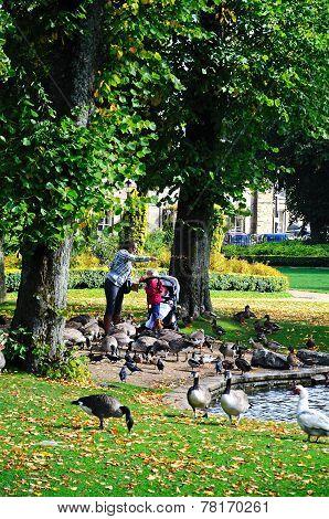 Feeding the ducks, Buxton.