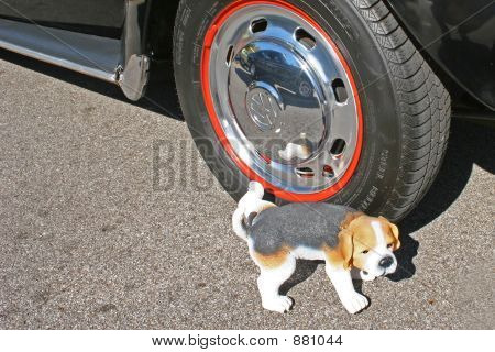 Toy Dog Peeing