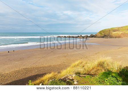 Challaborough beach Devon England uk popular surfing beach near Burgh Island and Bigbury-on-sea