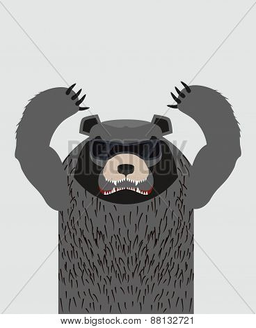 Bad bears. Wild angry animals. Villains. Vector illustration
