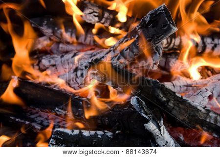 Camping bonfire with flame and firewood fragment close-up view in the dark poster