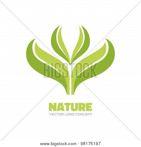 Nature - vector logo concept illustration. Ecology logo. Leafs logo. Bio logo. Organic logo. Agriculture logo. Sprouts, leaves and water drop. Vector logo template. Design element. poster