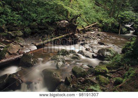 stream Ravenna