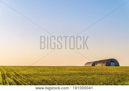 Farm hangars in evening field. Agricultural landscape.