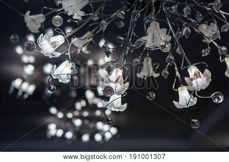 Chandelier led ceiling carob campanulaceae. Intererniy light indoor. Lamp for large spaces.