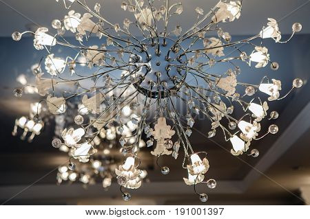 Chandelier ceiling carob led shines. Intererniy light indoor. Lamp for large spaces.