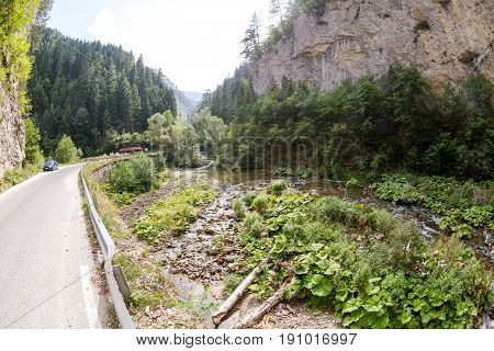 Narrow motor road along a mountain river in the gorge of the Rhodope Mountains abundantly overgrown with deciduous and evergreen forest at sunny summer day (Bulgaria)
