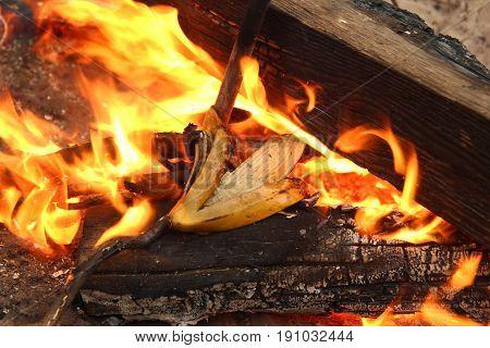 Siberia, Russia. Banana Peel On A Bonfire.