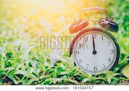 12 O'clock Retro Clock In The Garden Grass Field With Sun Light.
