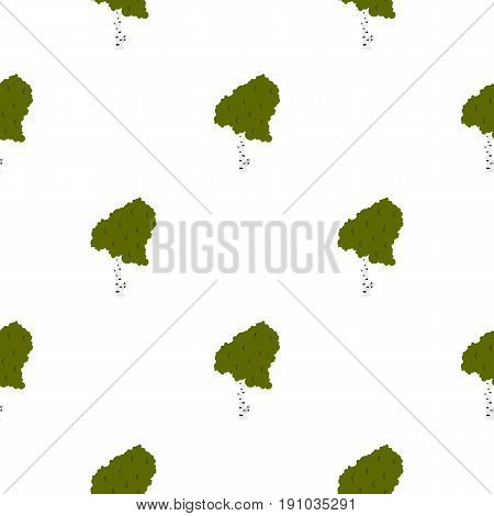 Wood birch pattern seamless flat style for web vector illustration