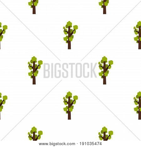 Tall tree pattern seamless flat style for web vector illustration