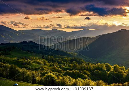 mountain rural area. agricultural fields on hills with forest. beautiful and vivid countryside landscape with cloudy sky at sunset.