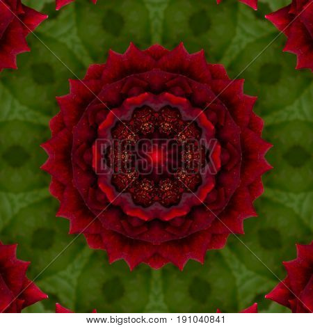 Surface Rose Kaleidoscope Pattern,for Scrapbook, Wallpaper, Cases For Smartphones, Web Background, P
