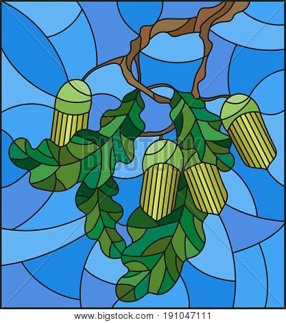 Illustration in stained glass style with oak branch with immature acorns and leaves leaf on blue background