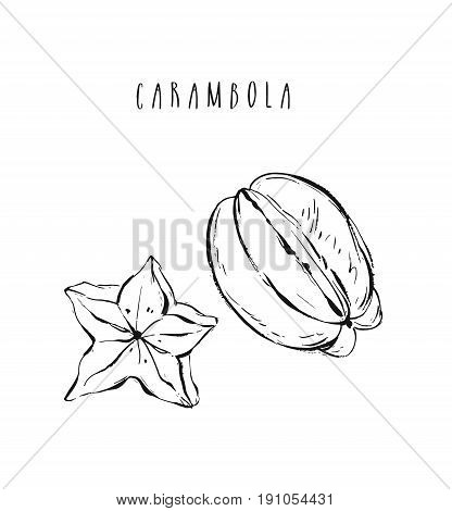 Hand drawn vector abstract exotic tropical fruit carambola collection illustration set isolated on white background