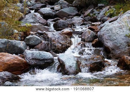 mountain river. fast stream water. Russia Altai