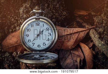 Vintage clock, antique pocket watch, Concept of time, the past or deadline.