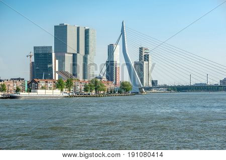 Rotterdam city cityscape skyline with Erasmus bridge and Nieuwe Maas (Rhine) river in front. South Holland, Netherlands.