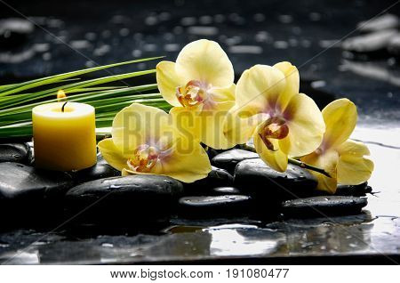 spa concept –yellow orchid and ,candle green leaf ,candle
