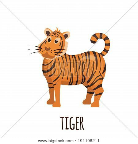Cute Tiger in flat style isolated on white background. Cartoon tiger. Zoo animal. Vector illustration.