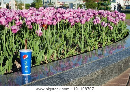 Minsk, Belarus, may 19, 2017: paper cup of Pepsi on a background of tulips. Pepsi is a carbonated soft drink produced PepsiCo.