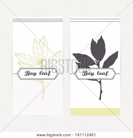 Bay leaves seasoning. Hand drawn branch in outline and silhouette style. Spicy herbs retro labels collection for food packaging or kitchen design. Vector illustration