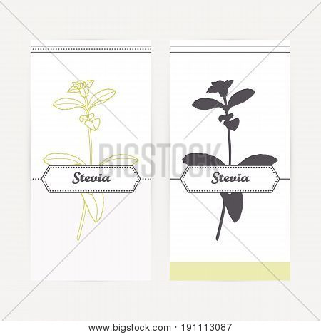Stevia seasoning. Hand drawn branch with leaves in outline and silhouette style. Spicy herbs retro labels collection for food packaging or kitchen design. Vector illustration