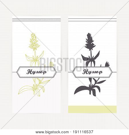 Hyssop seasoning. Hand drawn branch with leaves and flowers in outline and silhouette style. Spicy herbs retro labels collection for food packaging or kitchen design. Vector illustration