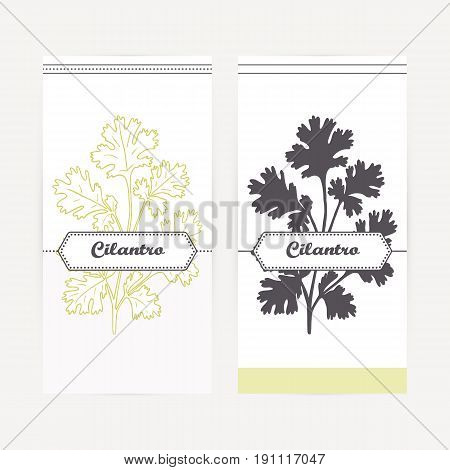 Cilantro seasoning. Hand drawn branch with leaves in outline and silhouette style. Spicy herbs retro labels collection for food packaging or kitchen design. Vector illustration
