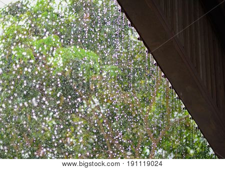 Rain drops fall continuously from roof with blur green nature background.