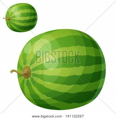 Watermelon. Cartoon vector icon isolated on white background. Series of food and drink and ingredients for cooking.