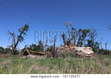 An old farm building and surrounding trees destroyed by a tornado.