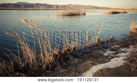 The lake shore is covered with reeds with the remnants of the snow still not melted on the backdrop of hills and sky