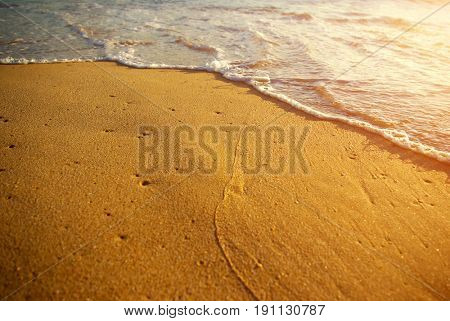 Closeup of sea foam on wet golden sand with copy space
