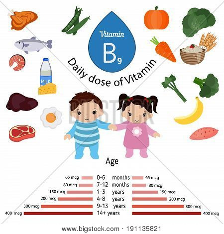 Vitamin B9 or folic acid and vector set of vitamin B9 rich foods. Healthy lifestyle and diet concept. Daily doze of vitamin B9.