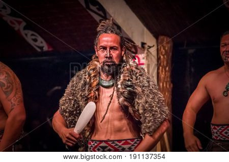 NORTH ISLAND, NEW ZEALAND- MAY 17, 2017: Serious Tamaki Maori man holding a wooden lance, with traditionally tatooed face wearing traditional dress at Maori Culture, Tamaki Cultural Village, in New Zealand.