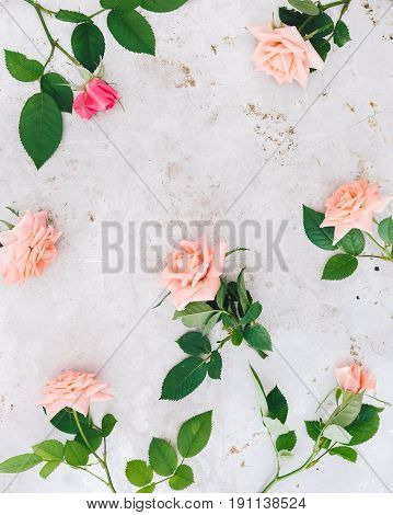 Rose flowers background. Flowers composition made of fresh roses flowers on rustic gray background. Flat lay, top view with blank space