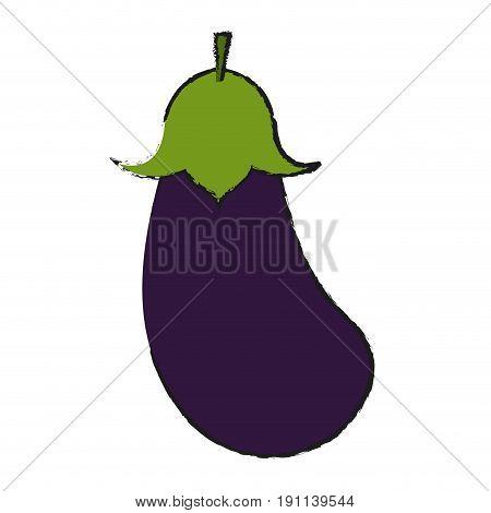 eggplant or aubergine vegetable icon image vector illustration design