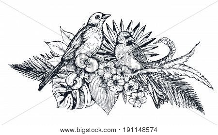 Vector composition of tropical flowers, palm leaves, jungle plants, paradise bouquet with exotic bird. Beautiful black and white floral vector illustration isolated on white background in sketch style.