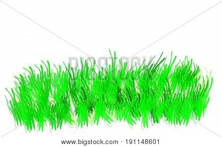 Green grass isolated on white backgraund. vector illustration