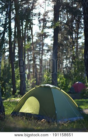 Hiking in the forest in summer, healthy camping in details