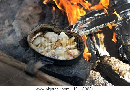 Food in the forest on fire, healthy camping in details