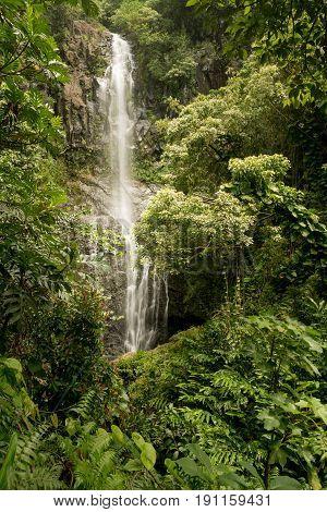 Cascade of Wailua Falls between green jungle plants on the road to Hana in Maui, Hawaii