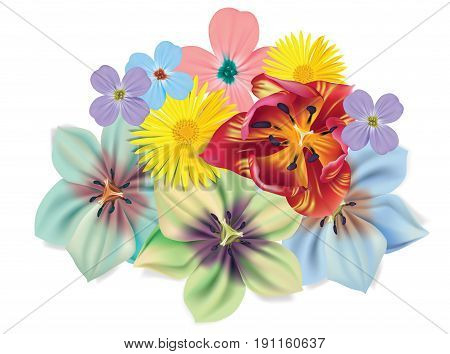 Beautiful flowers bouquet. Vector Summer flowers isolated on white background. Flowers for floral design. Chamomile, tulip, violets