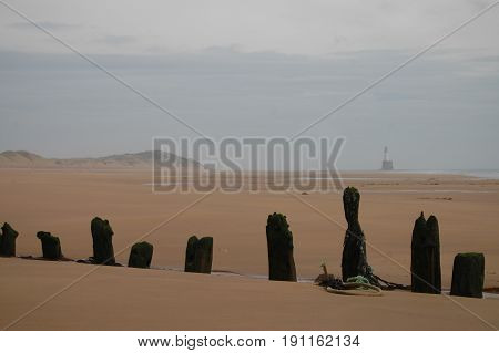 The remains of a shipwreck buried in sand with Rattray Head lighthouse in the background